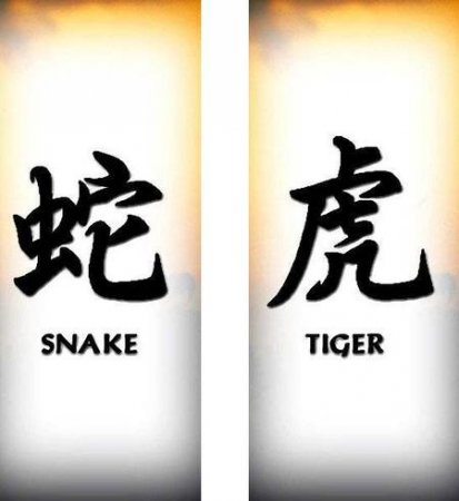 Тату тигр и змея