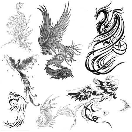 Татуировка феникса картинки