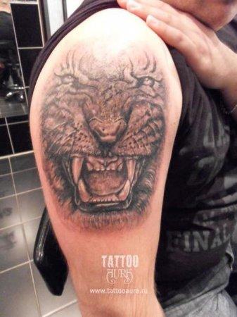 Значение татуировки оскал волка