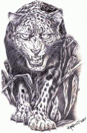Эскизы татуировок черно белые